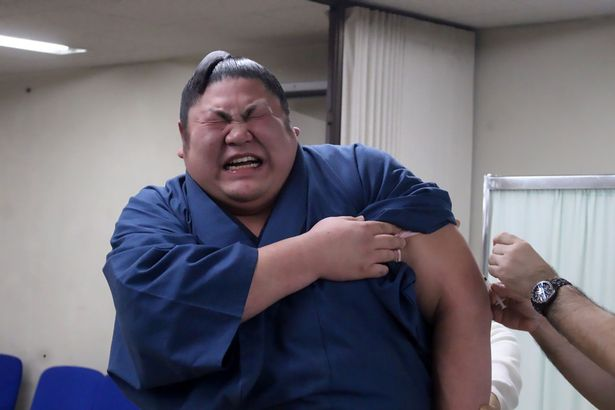 عکس العمل جالب کشتی گیران سامورایی در هنگام تزریق واکسن + تصاویر