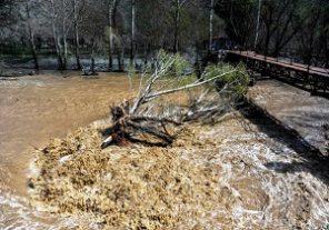 هشدار آبگرفتگی معابر و طغیان رودخانه ها در پی تشدید بارشها/ آسمان تهران روز شنبه برفی است