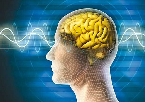 ۸ عادت خطرناک که مغز را نابود میکند