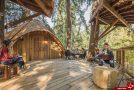 خانه درختی مایکروسافت برای کارمندانش+ تصاویر